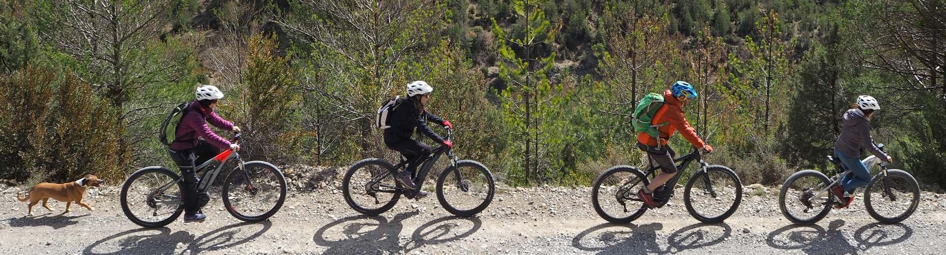 tarifas e-bike